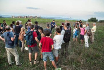 Slow Travel Fest, escursioni, arte e musica lungo la Francigena