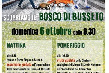 Urban nature: iniziativa del Wwf anche a Siena