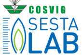 Cosvig assume 2 project engineer per SestaLab