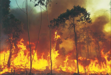 Ai Fisiocritici una conferenza sull'Amazzonia