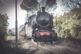 """Al """"Mercato nel Campo"""" con lo storico treno a vapore"""
