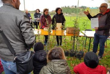 """Ad Isola d'Arbia la cerimonia di """"Un albero per ogni nato"""""""