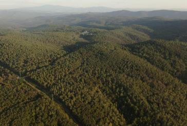 """""""Comunità naturali: tesori di biodiversità"""": se ne parla ai Fisiocritici"""