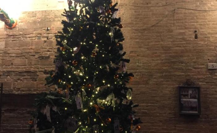 Contrade: il miglior albero di Natale è della Selva