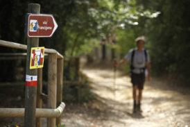 Monteriggioni accoglie il Forum annuale sulla Via Francigena
