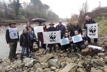 """""""La protesta dei pesci di Fiume"""": anche il WWF Siena mobilitato"""