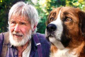 """""""Il richiamo della foresta"""": la storia di Buck è al cinema"""