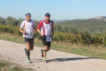 Ecomaratona del Chianti: lungo il percorso