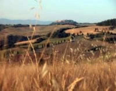 Biodiversità e volontariato ambientale nel cuore di Monticiano