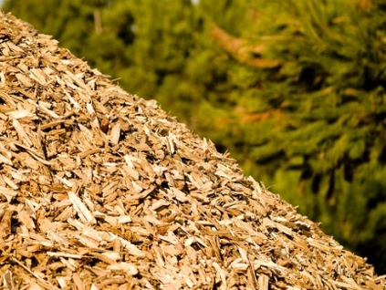 Sinalunga: sì della Provincia per le biomasse?