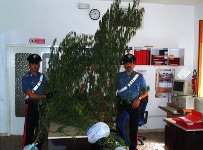 Poggibonsi: operazione antidroga dei Carabinieri