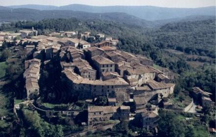 Grandinata di Ferragosto  Monticiano chiede lo stato di calamità ... 2f21780e4fc3