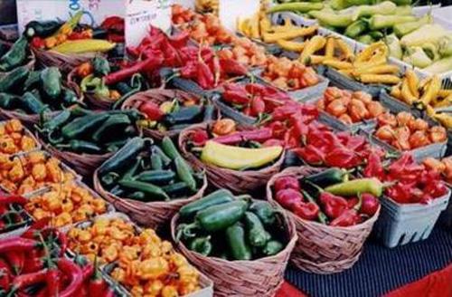 Etichettatura degli alimenti e filiera corta: focus a Siena