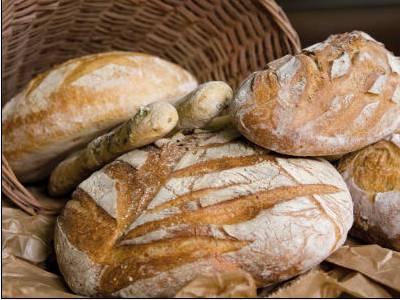 """""""Le giornate del pane"""". Gli incontri dell'Università per Expo"""