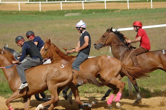 Palio: recupero delle corse di addestramento a Monticiano