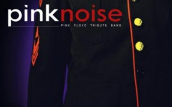 I Pink Noise  animano la festa del donatore di sangue a Castellina