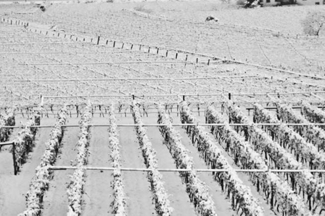 Allerta neve: scuole chiuse per 2 giorni in Valdichiana