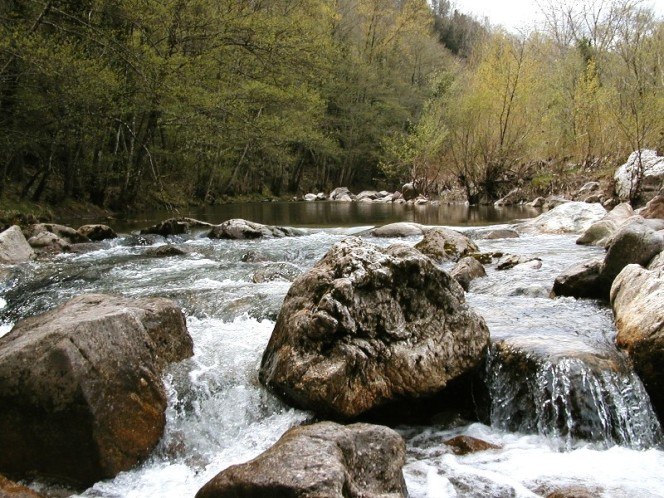 Arpat presenta lo stato dei corsi d'acqua del senese