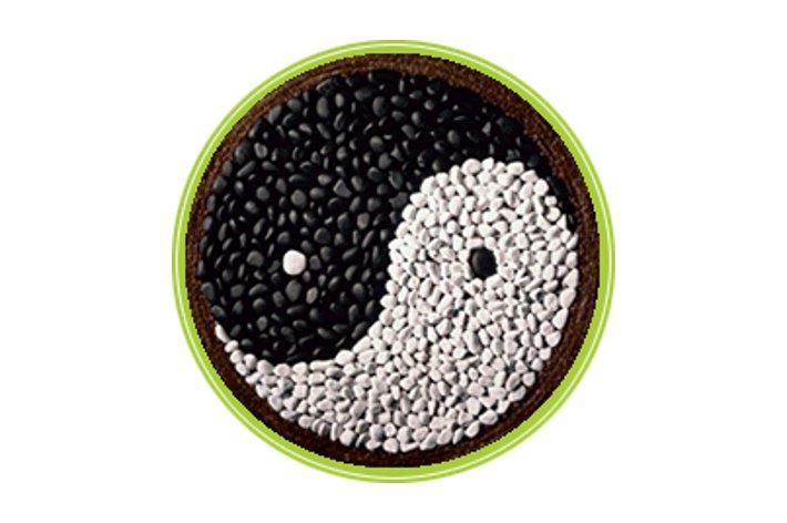 Dieta macrobiotica yin yang