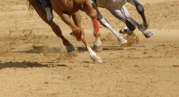 Prime corse di addestramento a Monticiano