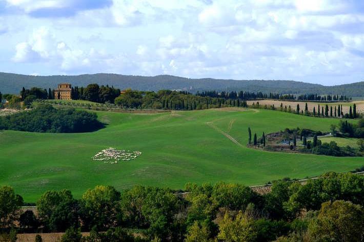 Terre Regionali Toscane assume personale a Suvignano