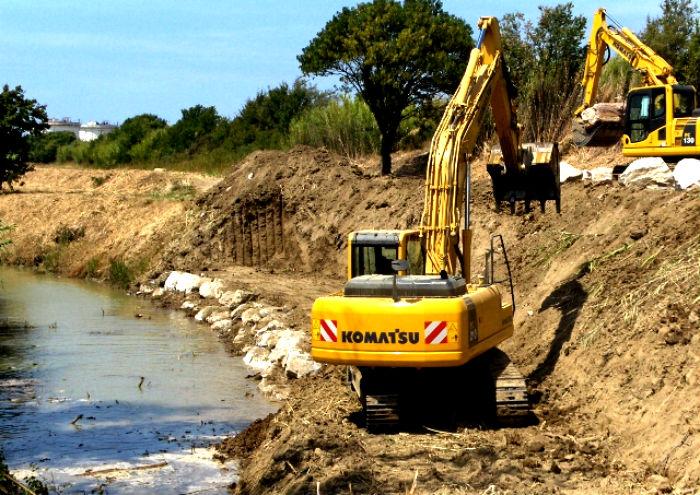 Perché i fiumi senesi vengono privati della vegetazione riparia