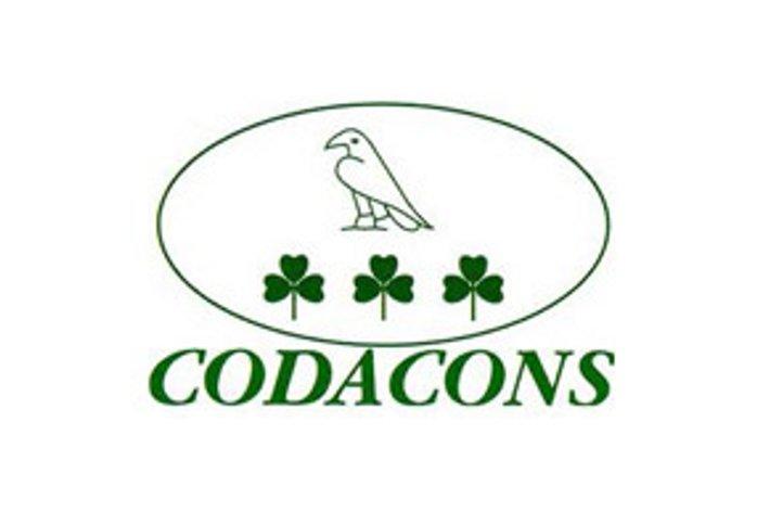 """Codacons vs Palio: """"Una manifestazione obsoleta e immotivatamente cruenta"""""""