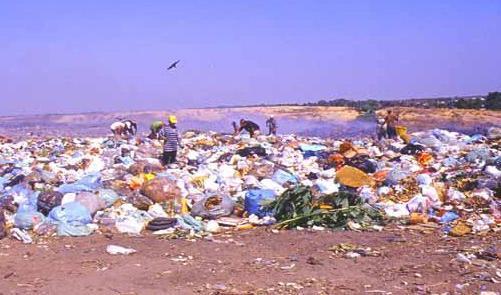 Sacchetti di plastica al bando. Non in Italia…
