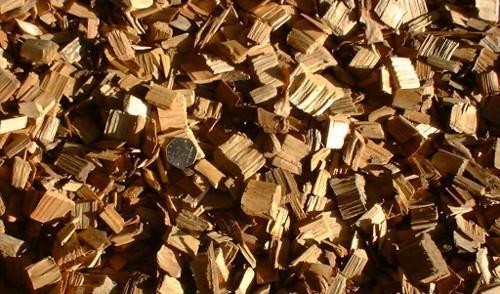 Biomasse: il contributo al dibattito degli Ecodem