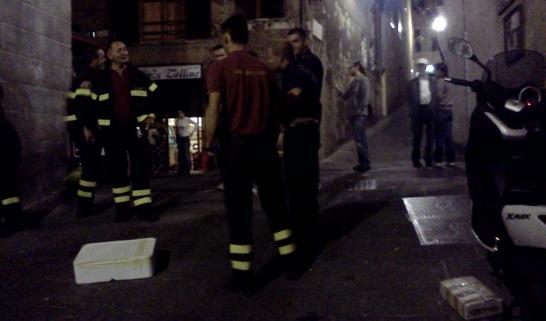 Un serpente catturato nella notte in via Santa Caterina