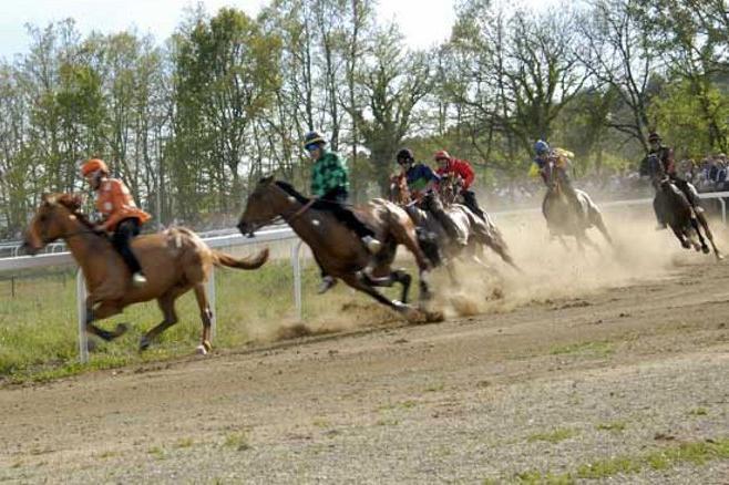 Palio: rinviate le corse di addestramento a Monticiano